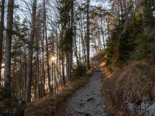 Tirol Splitter | Ehrenberg