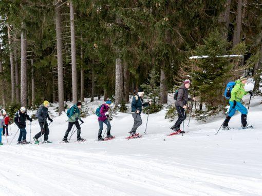 Schneeschuhwanderung Grünberg
