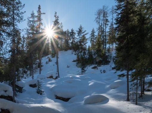 Tirol Splitter | Tauferberg – Hoher Stein – Wiesle