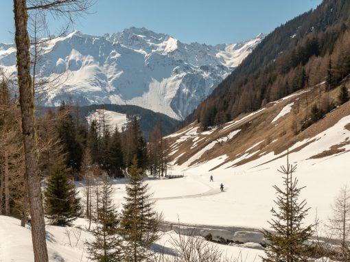 Tirol Splitter | Bergmahderweg Niederthai