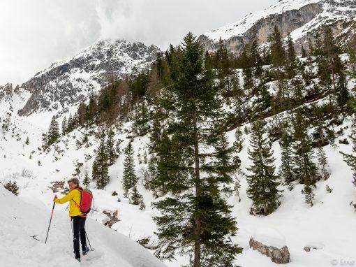 Tirol Splitter 23.02.2020 | Neue Alplhütte übern Ochsenbründlsteig