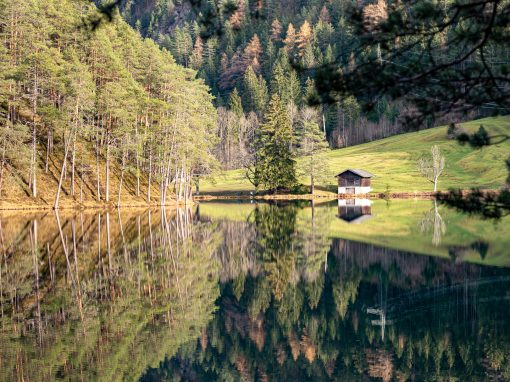 Tirol Splitter 18.11.2020 | Ruine Simundsburg am Fernsteinsee