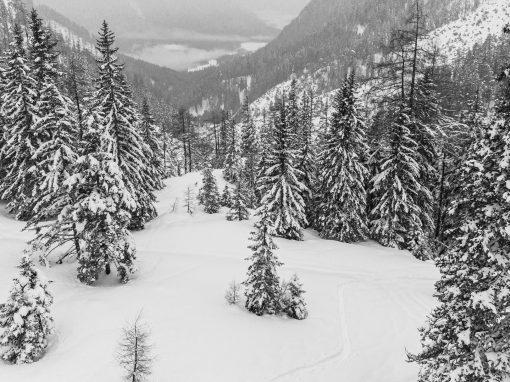 Tirol Splitter 30.01.2021 | Kurze Rodeltour vom Lehnberghaus