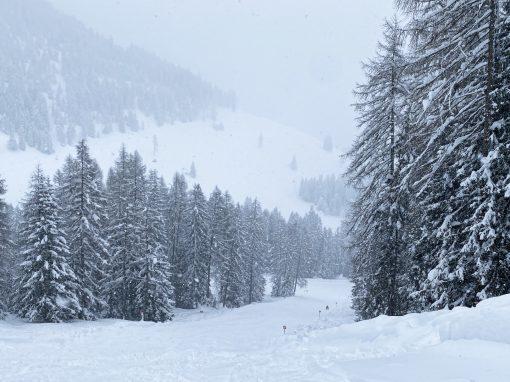 Tirol Splitter 17.01.2021 | Skipistentour in Imst und Rodeln Lehnberghaus