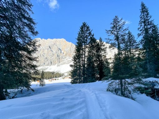 Tirol Splitter 17.02.2021 | Sonnige Pistenskitour in Ehrwald