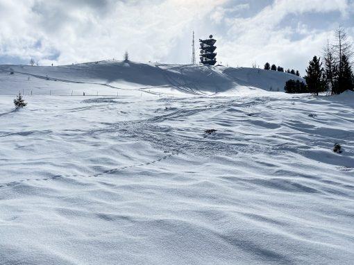 Tirol Splitter 07.03.2021 | Skitour von Rifenal zum Venet