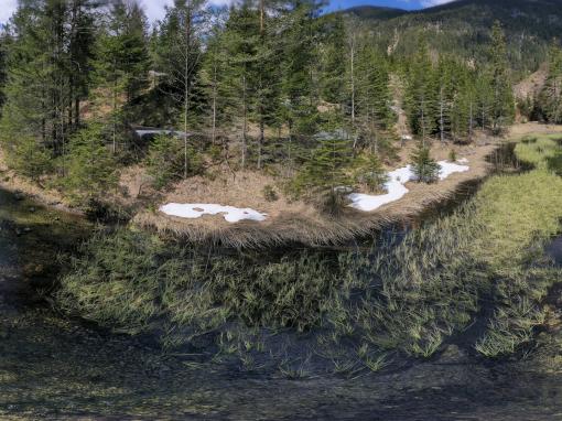 Tirol Splitter 21.04.2021 | Loisachquellen bei Biberwier